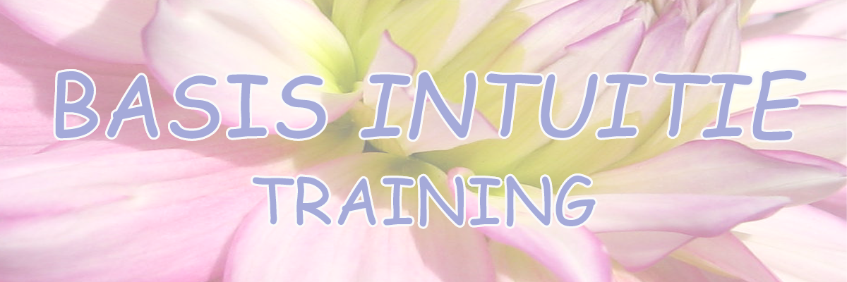 basis-intuitie-training-goedkopie