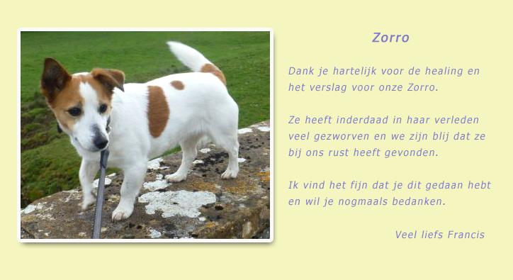 zorro-louisfrancis